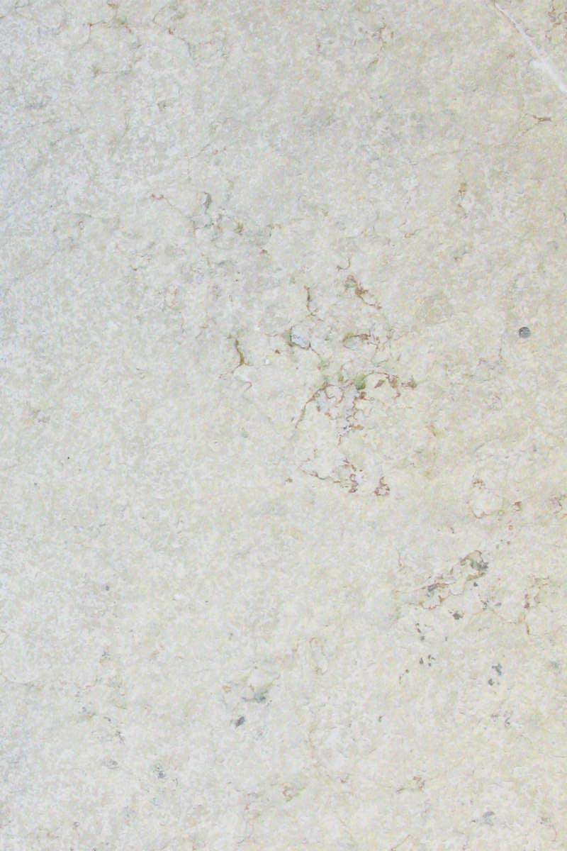 marbre fossilisé